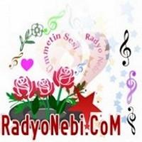 Radyo Nebi Dinle